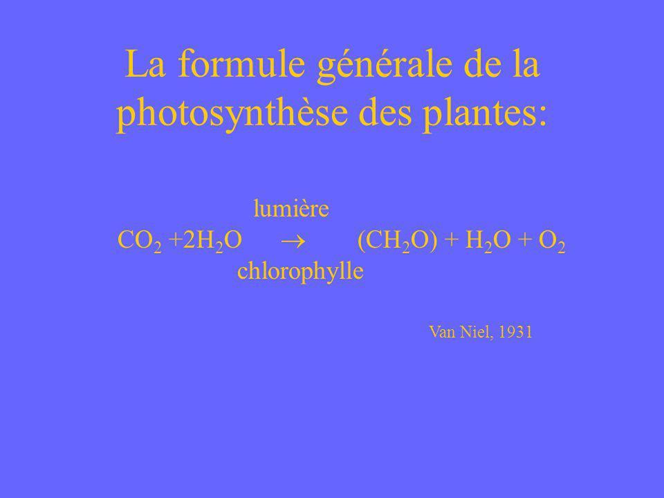 La formule générale de la photosynthèse des plantes: