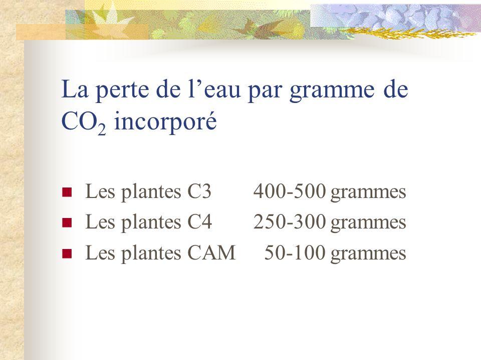 La perte de l'eau par gramme de CO2 incorporé
