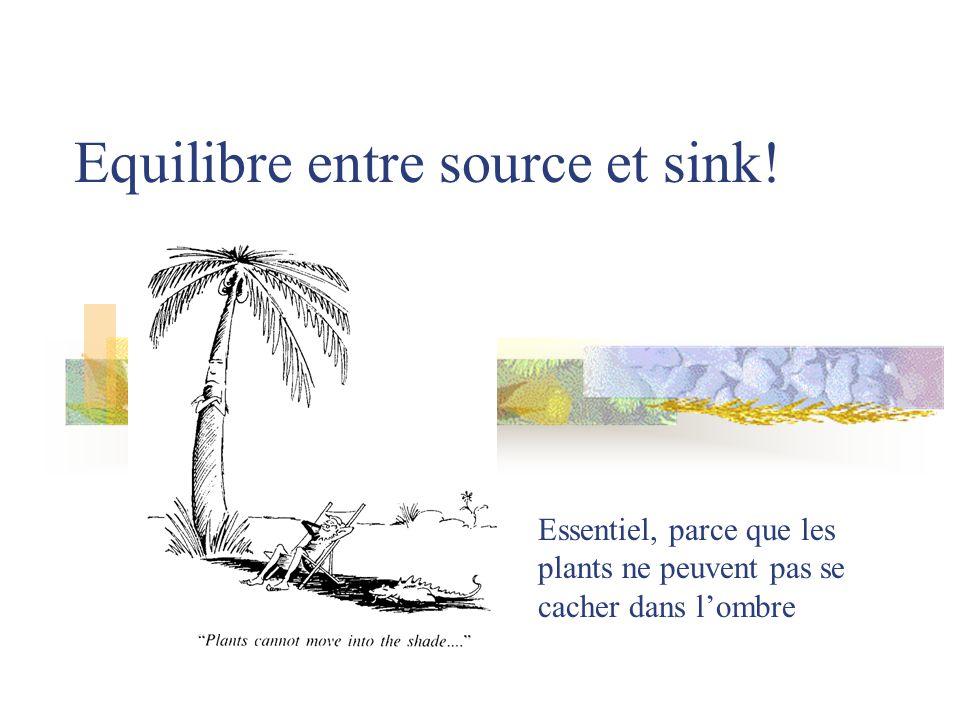 Equilibre entre source et sink!