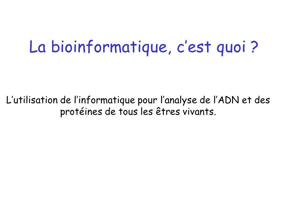 La bioinformatique, c'est quoi