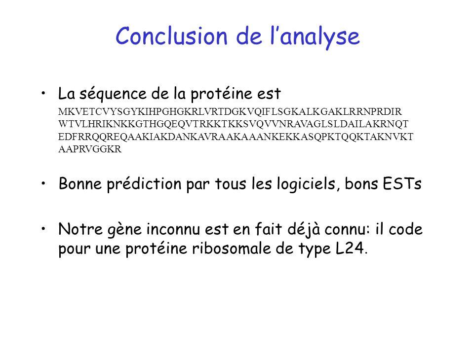 Conclusion de l'analyse
