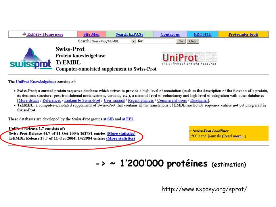 -> ~ 1'200'000 protéines (estimation)
