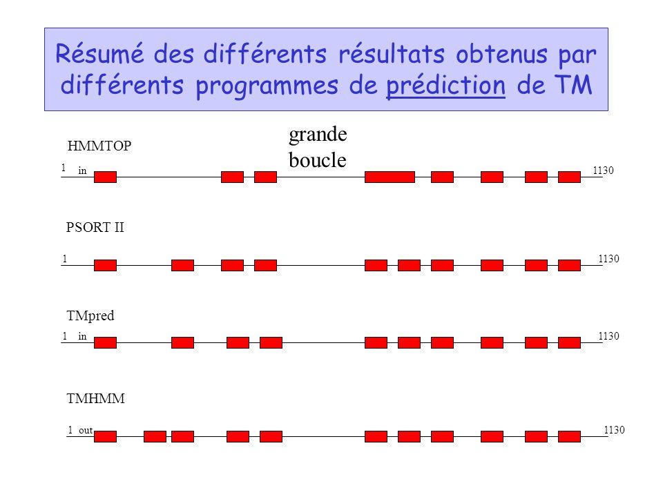 Résumé des différents résultats obtenus par différents programmes de prédiction de TM