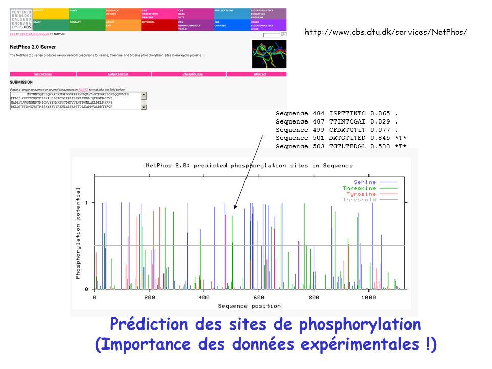 Prédiction des sites de phosphorylation
