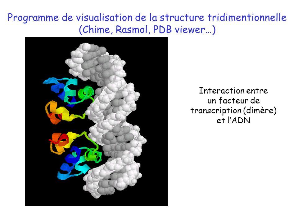 Programme de visualisation de la structure tridimentionnelle
