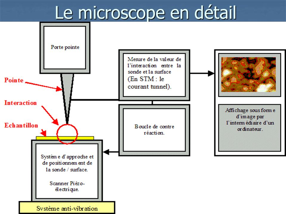 Le microscope en détail