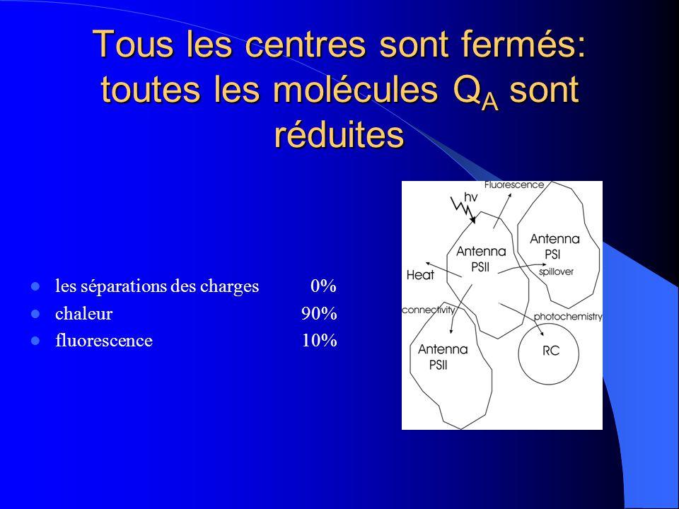 Tous les centres sont fermés: toutes les molécules QA sont réduites