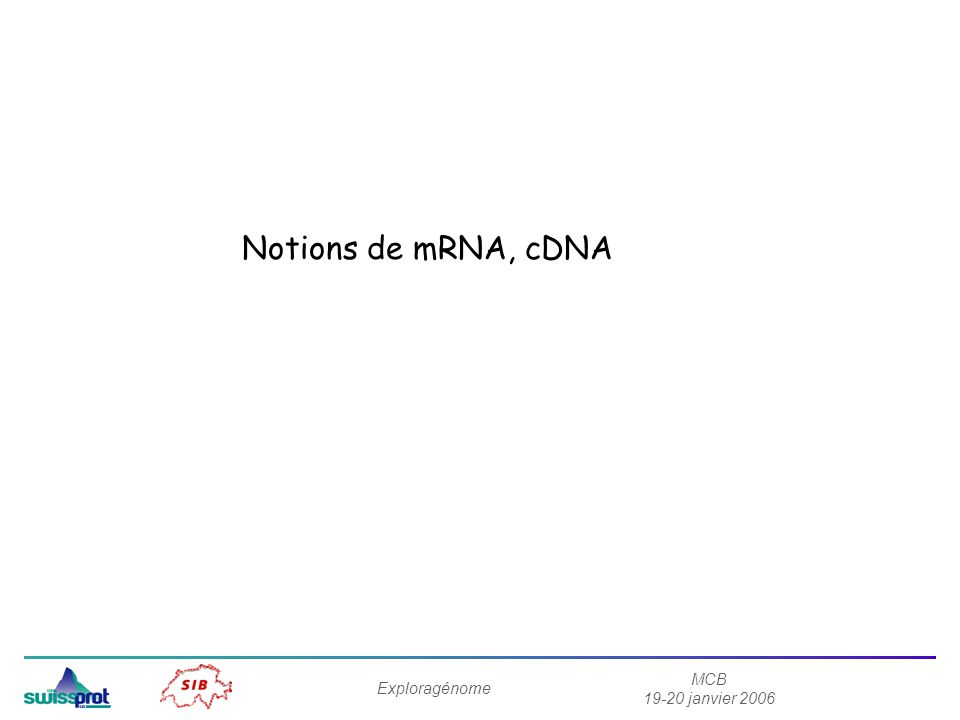 Notions de mRNA, cDNA Exploragénome MCB 19-20 janvier 2006