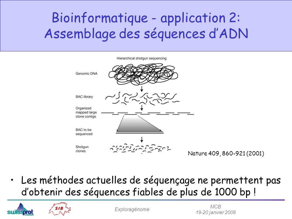 Bioinformatique - application 2: Assemblage des séquences d'ADN