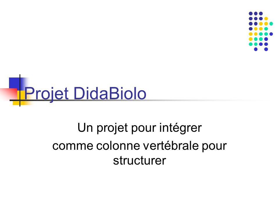 Un projet pour intégrer comme colonne vertébrale pour structurer