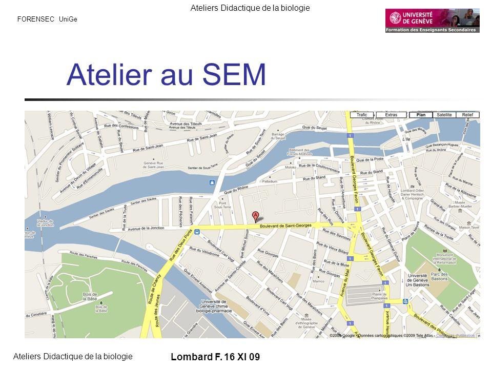 Atelier au SEM Rue des gazomètres Maps-google Lombard F. 16 XI 09