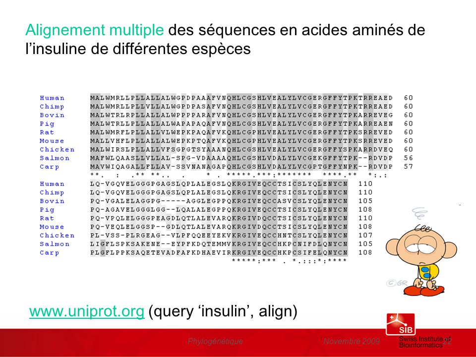 www.uniprot.org (query 'insulin', align)