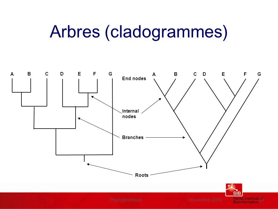 Arbres (cladogrammes)