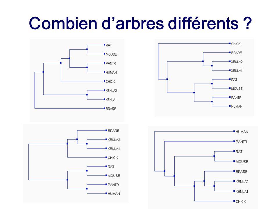 Combien d'arbres différents