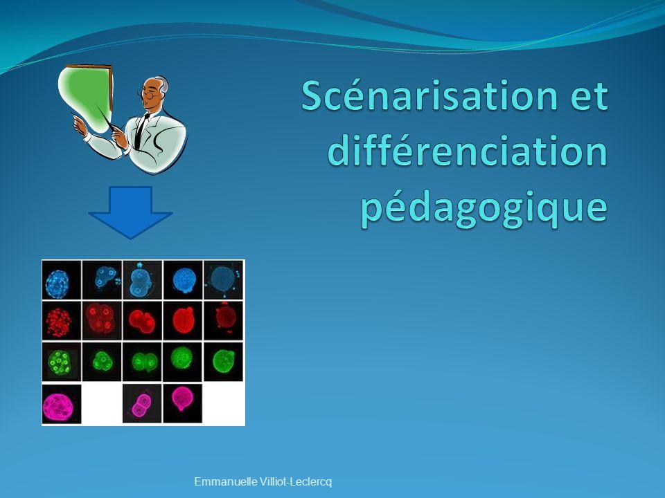 Scénarisation et différenciation pédagogique