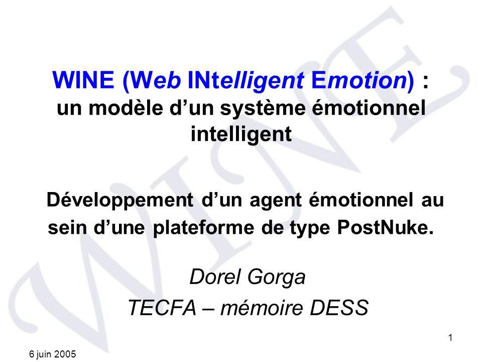 Dorel Gorga TECFA – mémoire DESS
