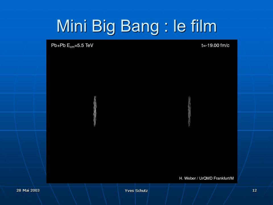 Mini Big Bang : le film 28 Mai 2003 Yves Schutz