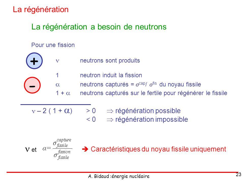 + -  et La régénération La régénération a besoin de neutrons