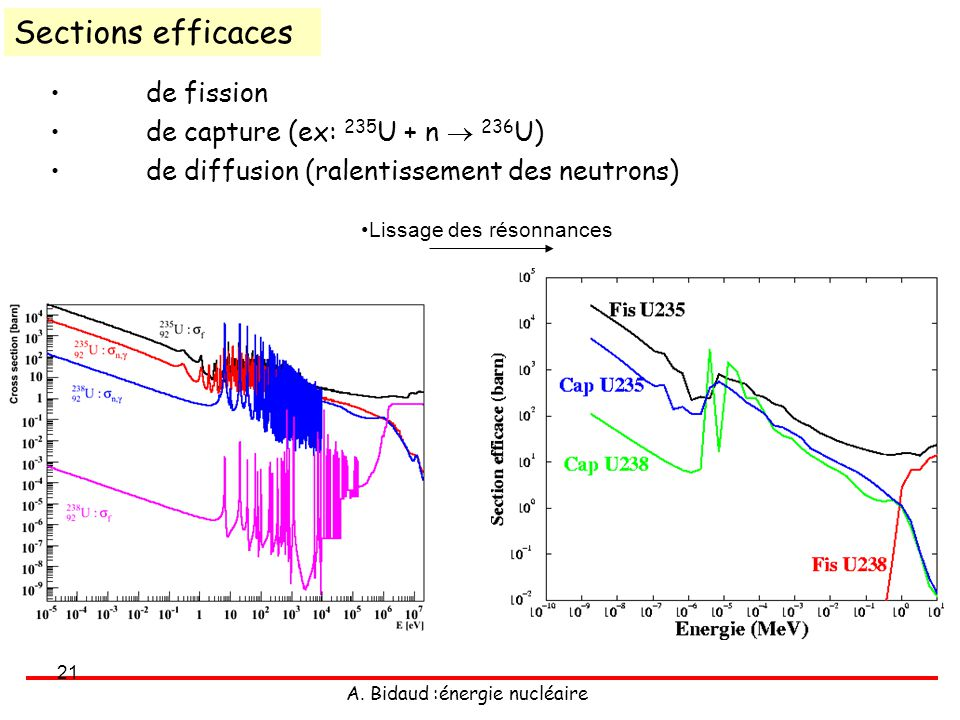 Sections efficaces de fission de capture (ex: 235U + n  236U)