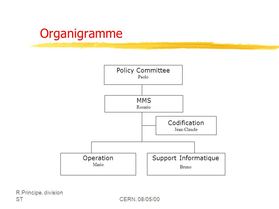 Organigramme Policy Committee MMS Codification Operation