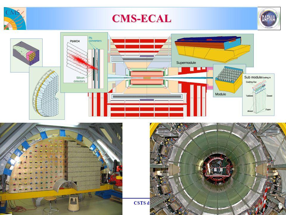 CMS-ECAL M.D. 19-octobre-2007 CSTS du SPP