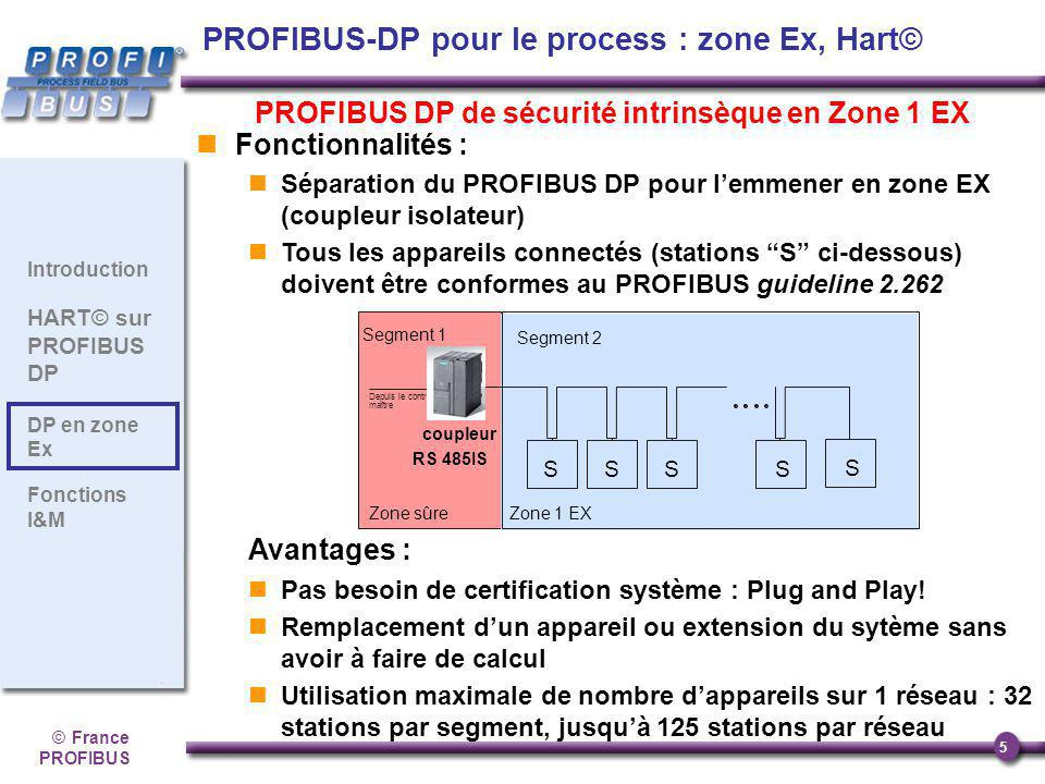PROFIBUS-DP pour le process : zone Ex, Hart©
