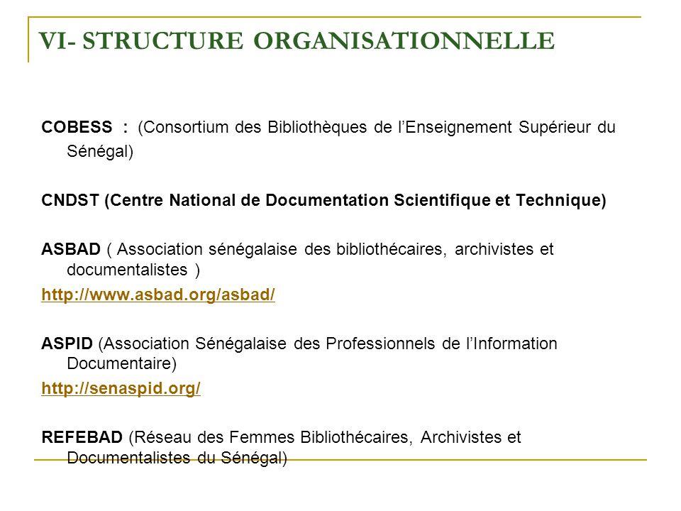 VI- Structure Organisationnelle