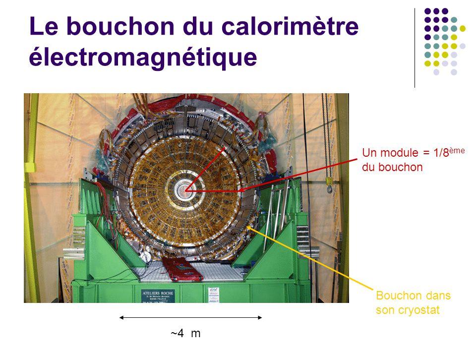 Le bouchon du calorimètre électromagnétique