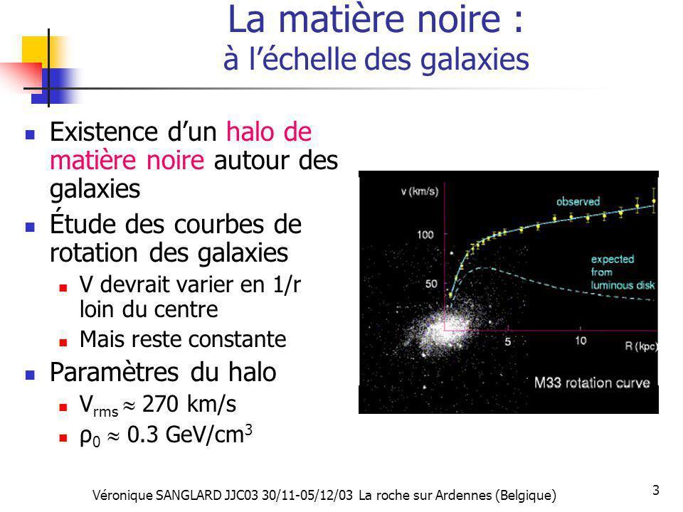 La matière noire : à l'échelle des galaxies