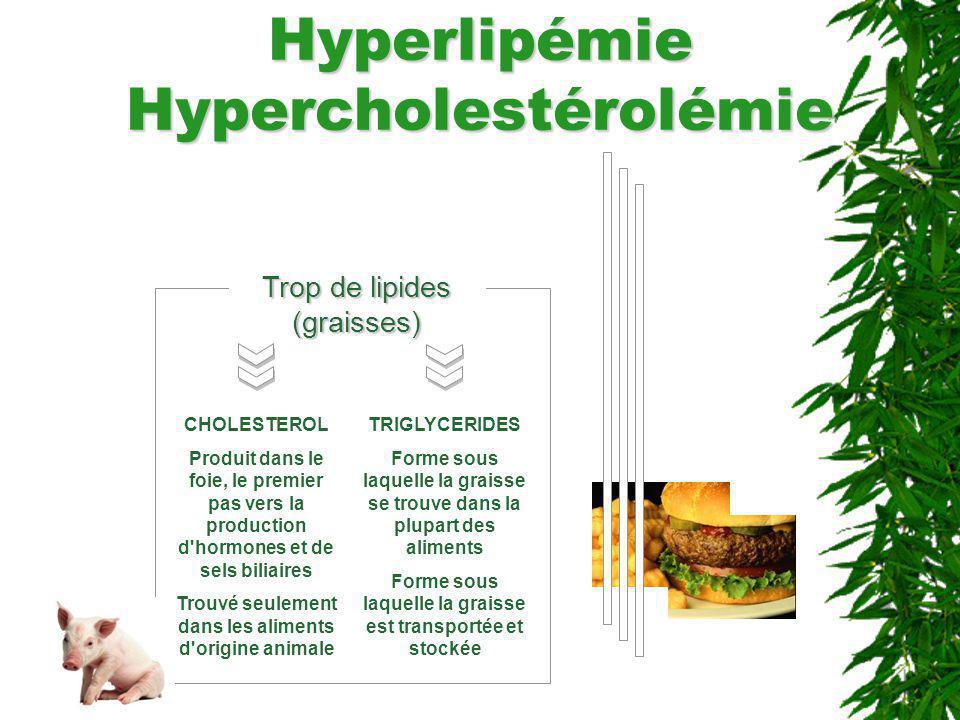 Hyperlipémie Hypercholestérolémie