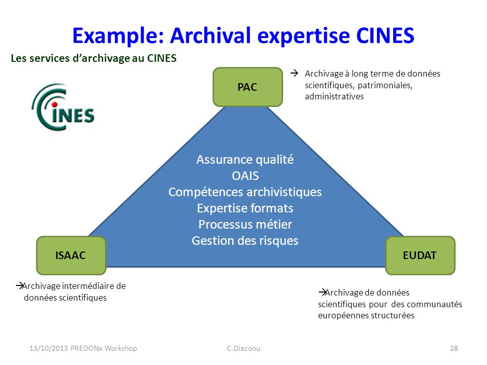 Example: Archival expertise CINES