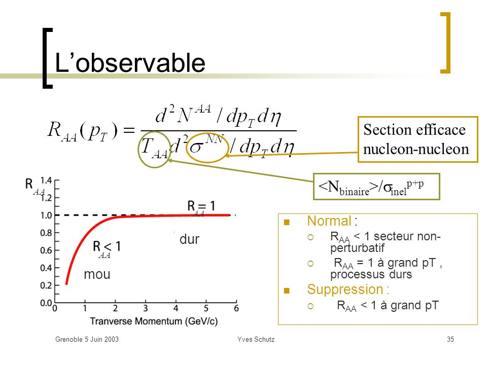 L'observable Section efficace nucleon-nucleon