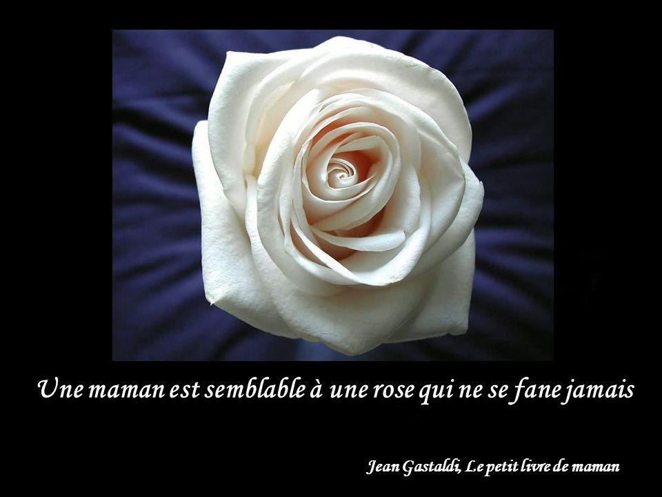 Une maman est semblable à une rose qui ne se fane jamais