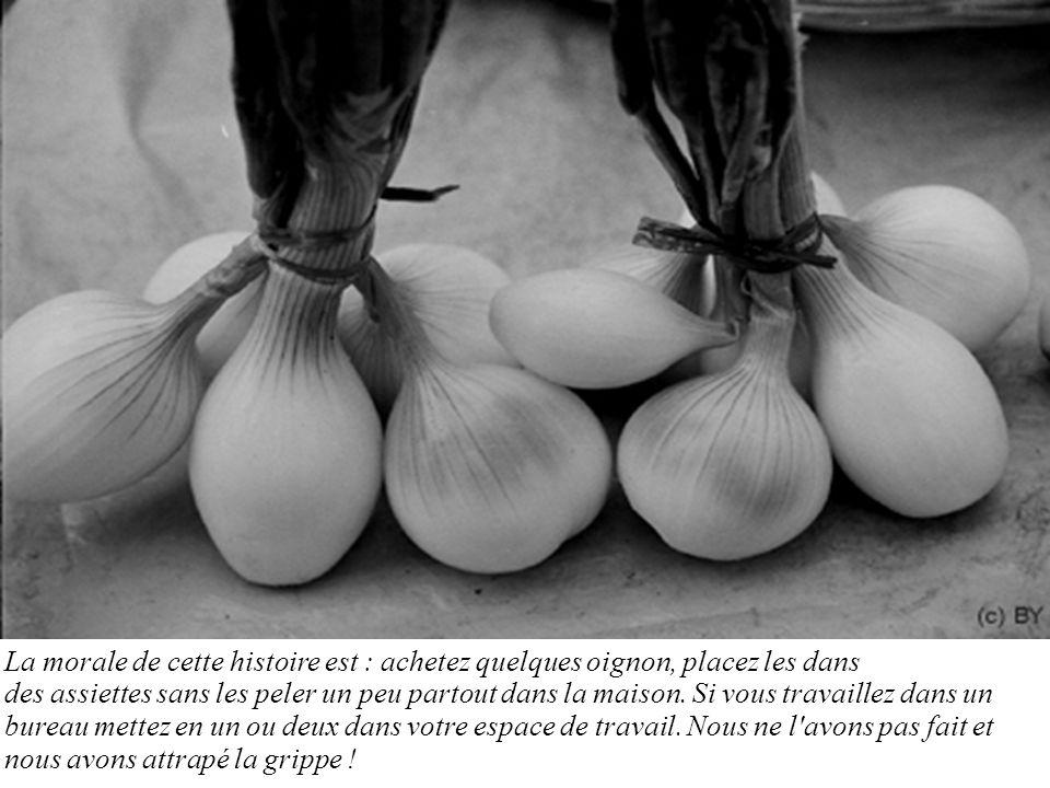 La morale de cette histoire est : achetez quelques oignon, placez les dans des assiettes sans les peler un peu partout dans la maison.