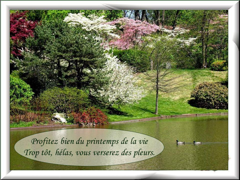 Profitez bien du printemps de la vie