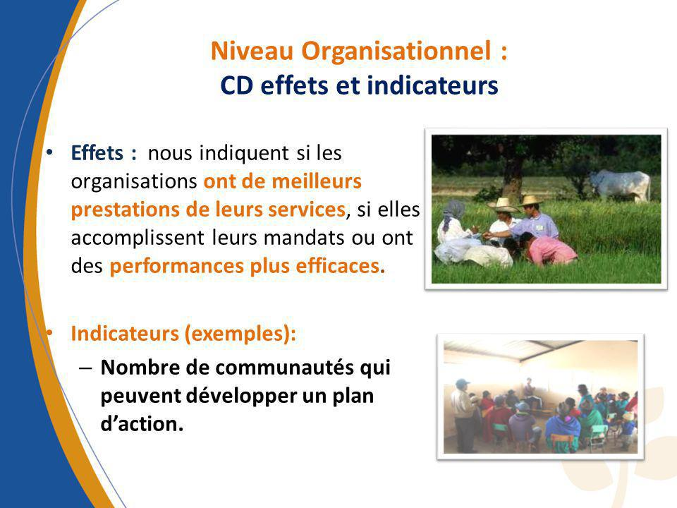 Niveau Organisationnel : CD effets et indicateurs