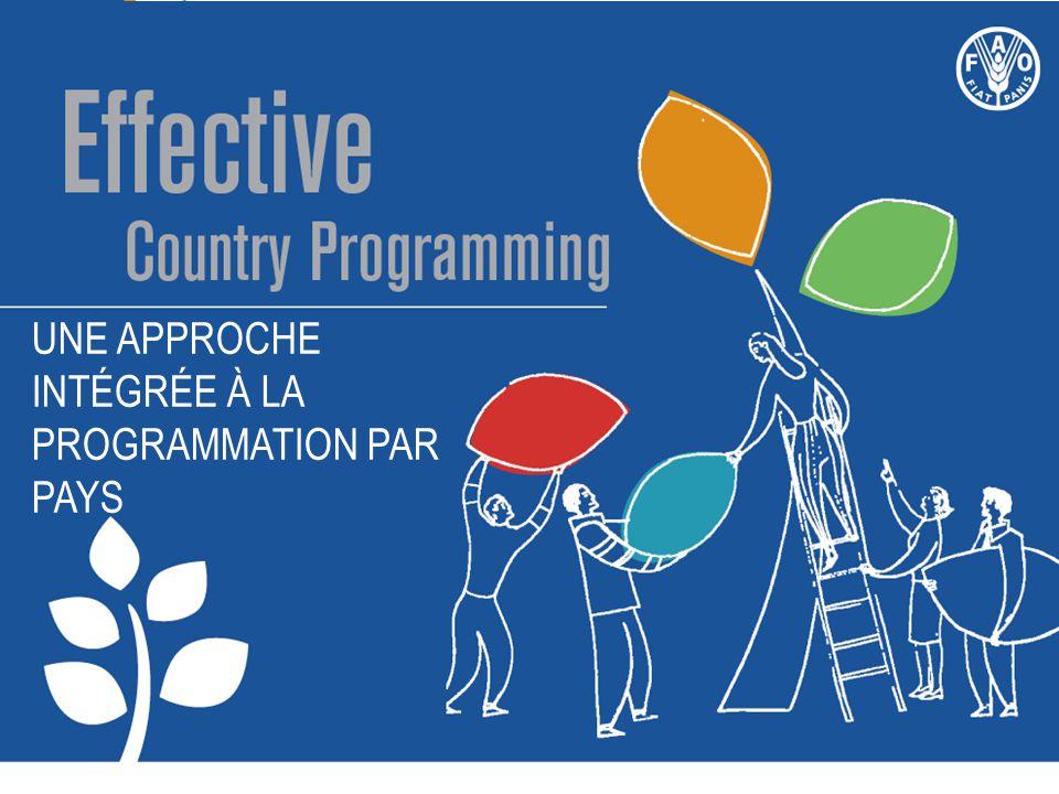 Une approche intégrée À la programmation par pays