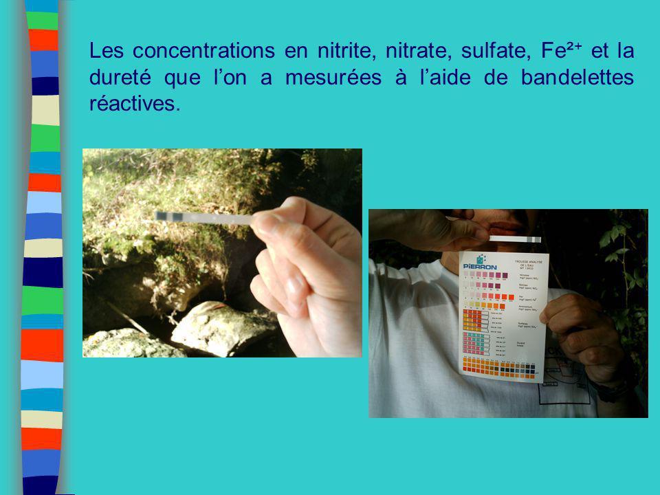 Les concentrations en nitrite, nitrate, sulfate, Fe²+ et la dureté que l'on a mesurées à l'aide de bandelettes réactives.