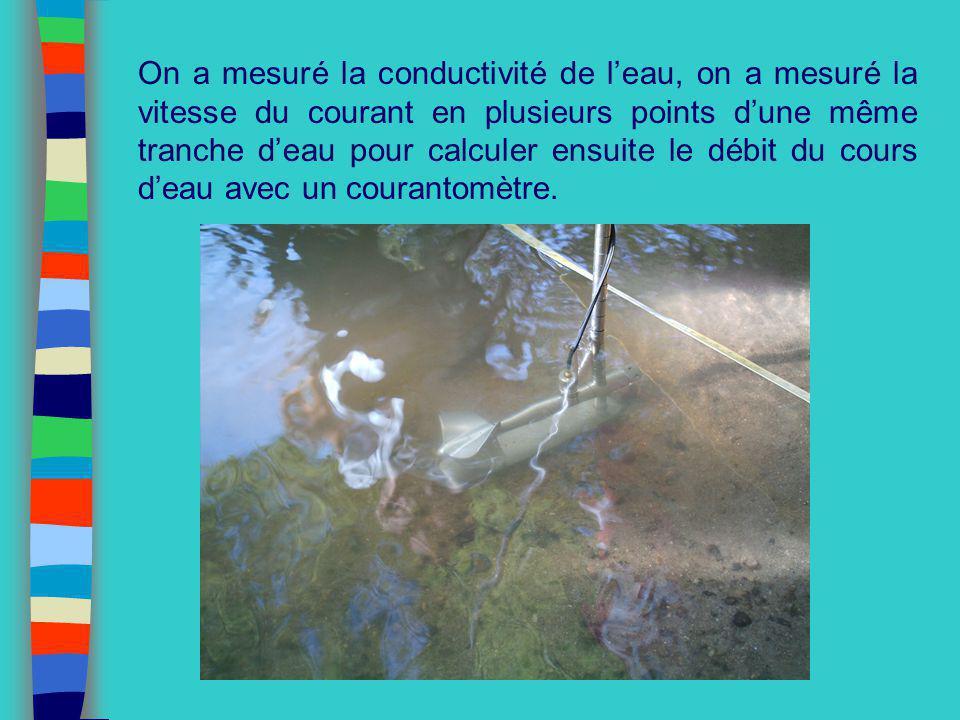 On a mesuré la conductivité de l'eau, on a mesuré la vitesse du courant en plusieurs points d'une même tranche d'eau pour calculer ensuite le débit du cours d'eau avec un courantomètre.