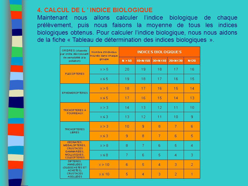 4. CALCUL DE L ' INDICE BIOLOGIQUE