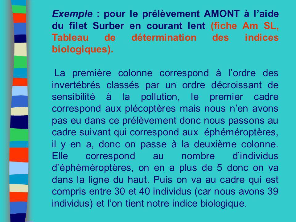 Exemple : pour le prélèvement AMONT à l'aide du filet Surber en courant lent (fiche Am SL, Tableau de détermination des indices biologiques).
