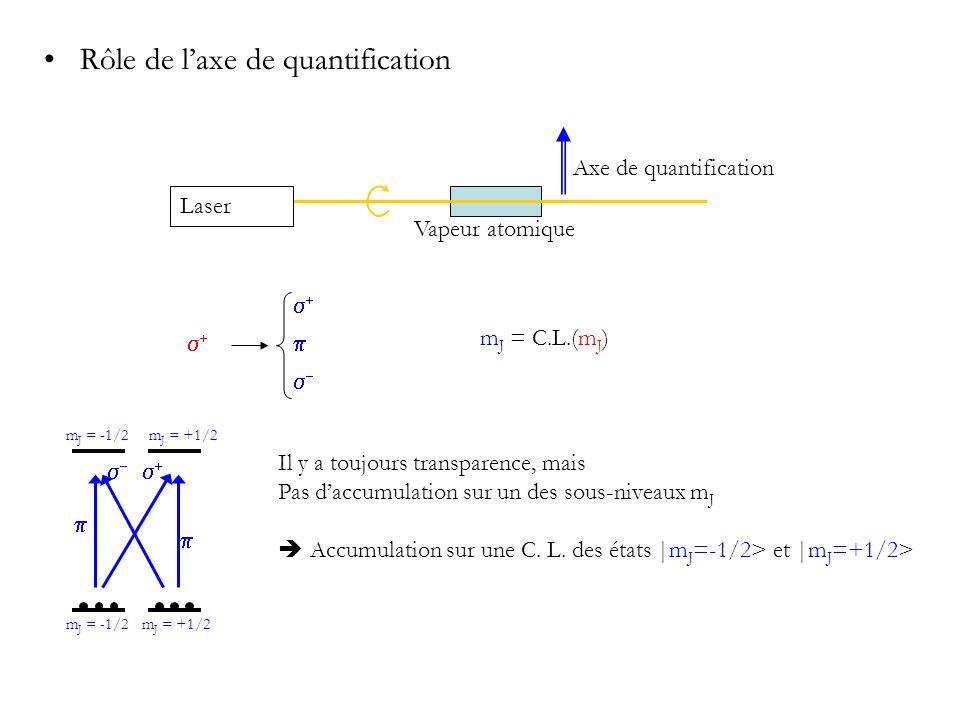Rôle de l'axe de quantification