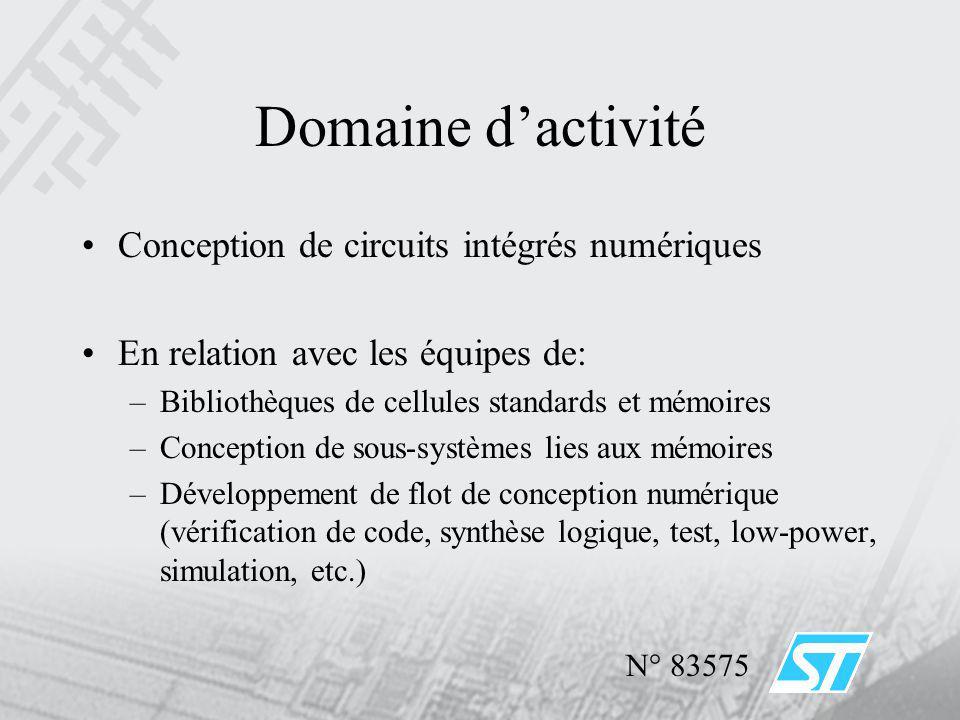 Domaine d'activité Conception de circuits intégrés numériques