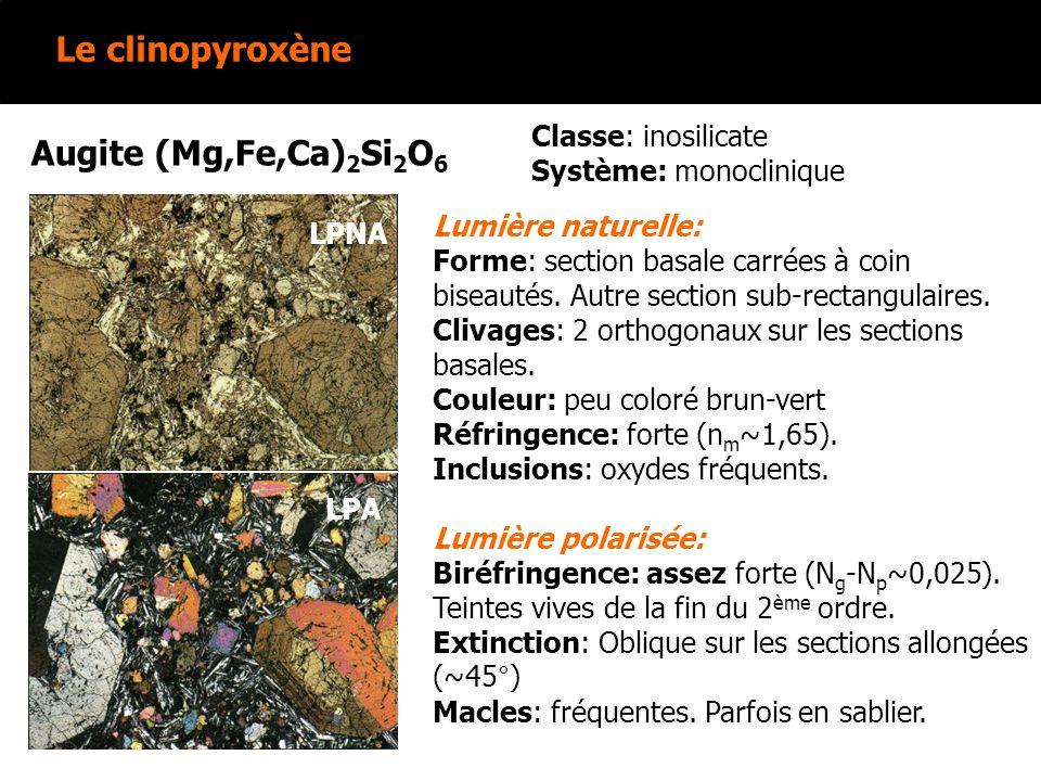 Le clinopyroxène Augite (Mg,Fe,Ca)2Si2O6 Classe: inosilicate