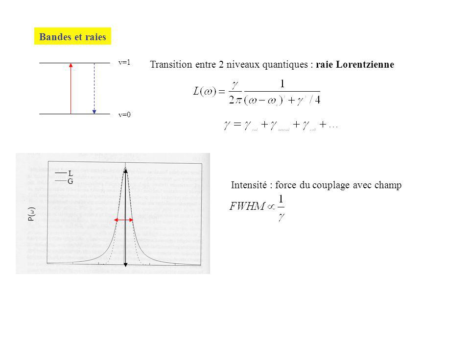 Transition entre 2 niveaux quantiques : raie Lorentzienne