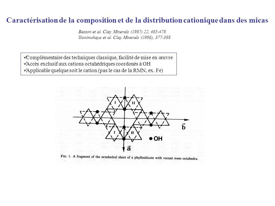 Caractérisation de la composition et de la distribution cationique dans des micas