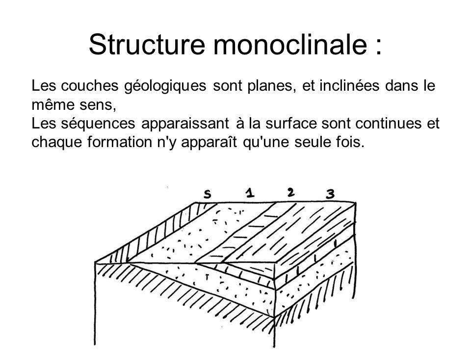 Structure monoclinale :