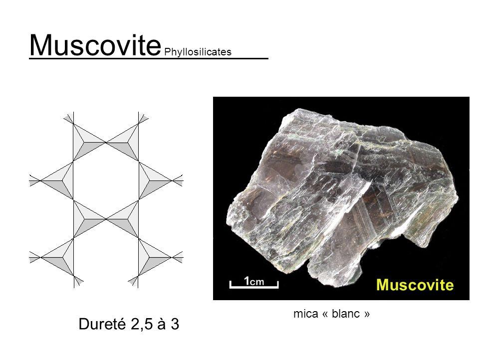 Muscovite Phyllosilicates
