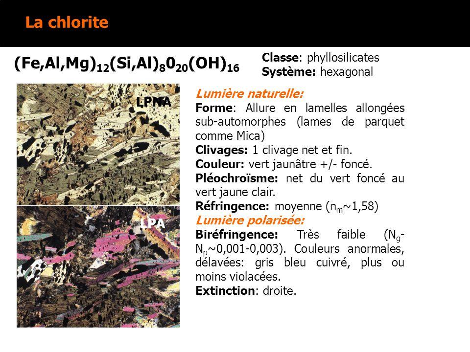 La chlorite (Fe,Al,Mg)12(Si,Al)8020(OH)16 LPNA LPNA LPA LPA