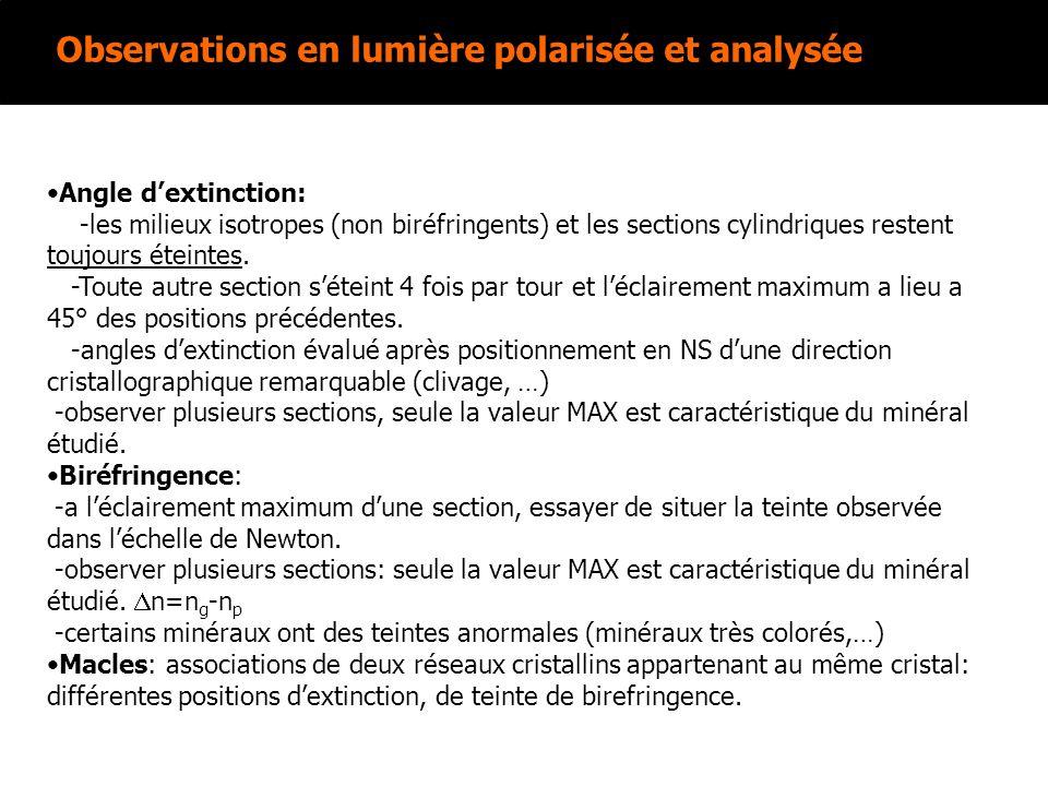 Observations en lumière polarisée et analysée